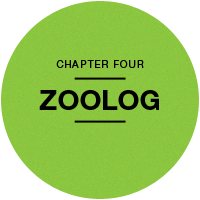 Chapter 4 - Zoolog